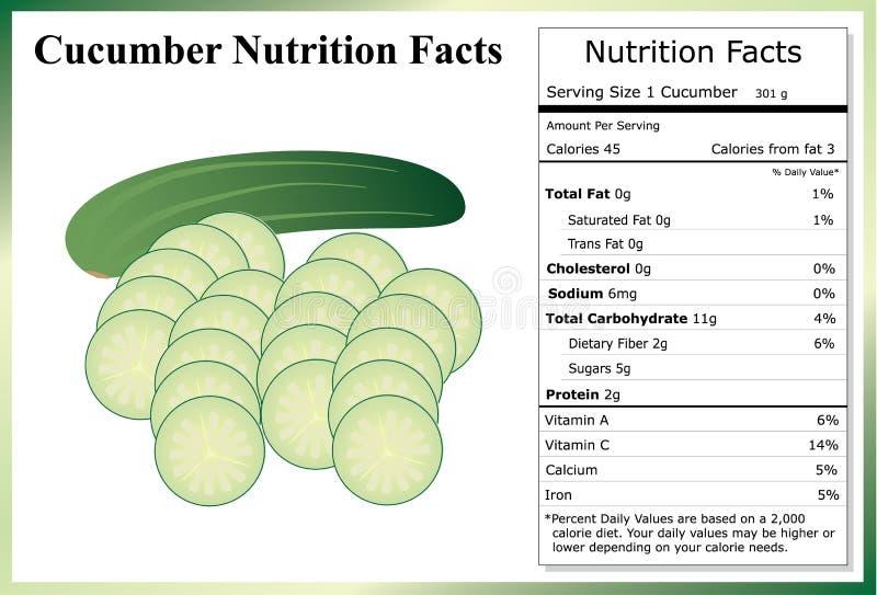 De Feiten van de komkommervoeding stock fotografie