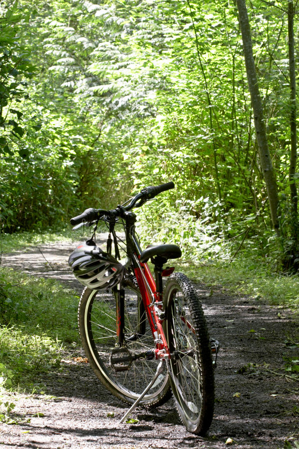 De fiets van de berg op sleep stock afbeelding