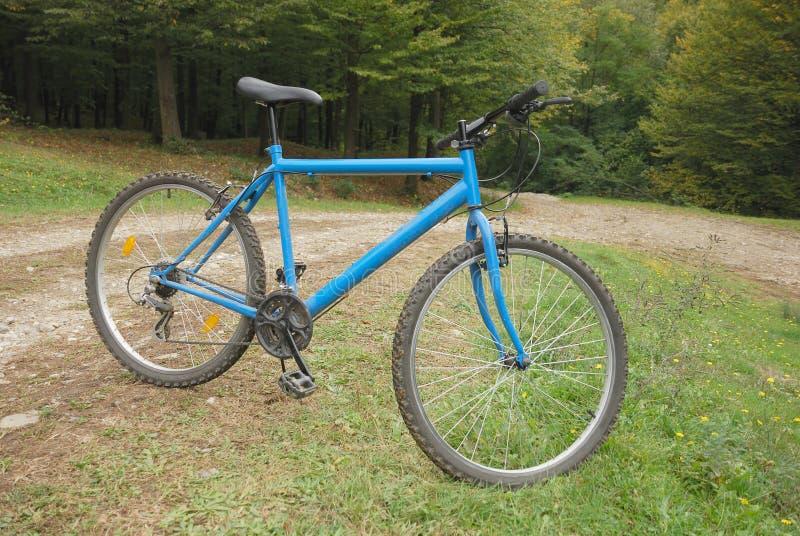 De fiets van de berg op weg royalty-vrije stock fotografie