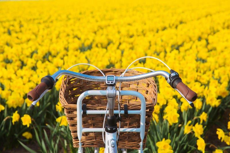 De fiets van de handvatbar tegen de achtergrond van bloeiende bloem fie stock foto