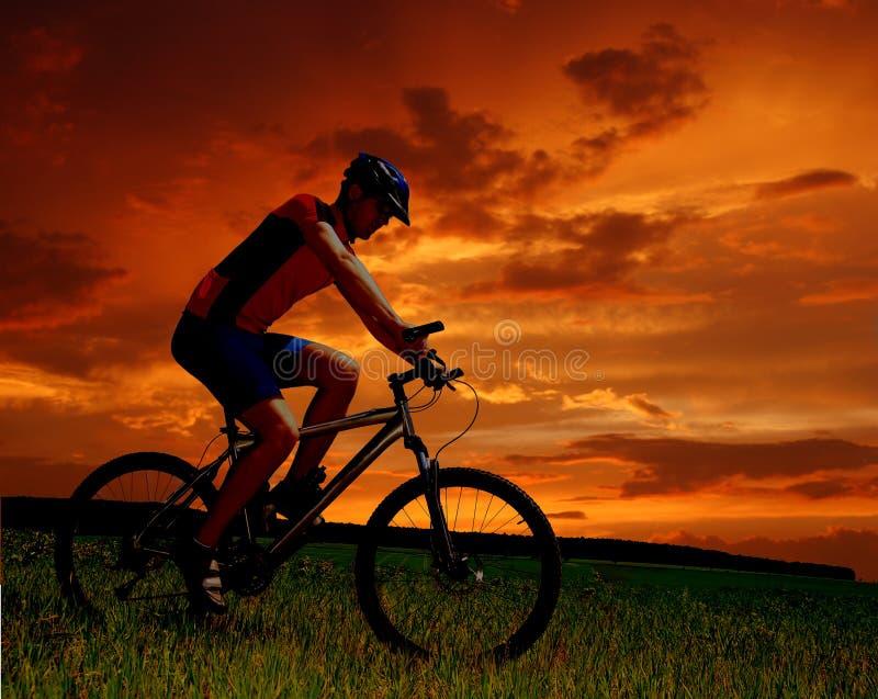 De fietser van de berg royalty-vrije stock fotografie