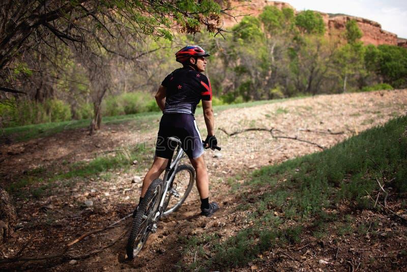 De fietser van de berg in canion stock afbeeldingen
