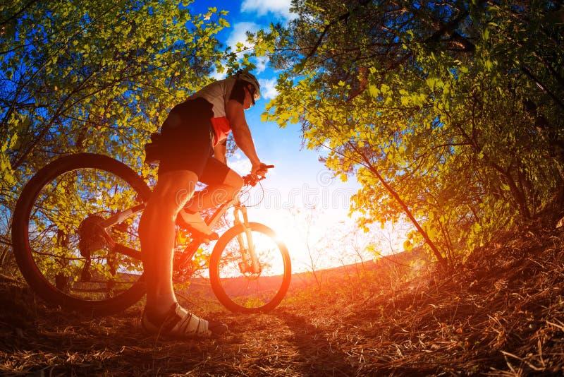 De fietser van de bergfiets openlucht berijden royalty-vrije stock foto's