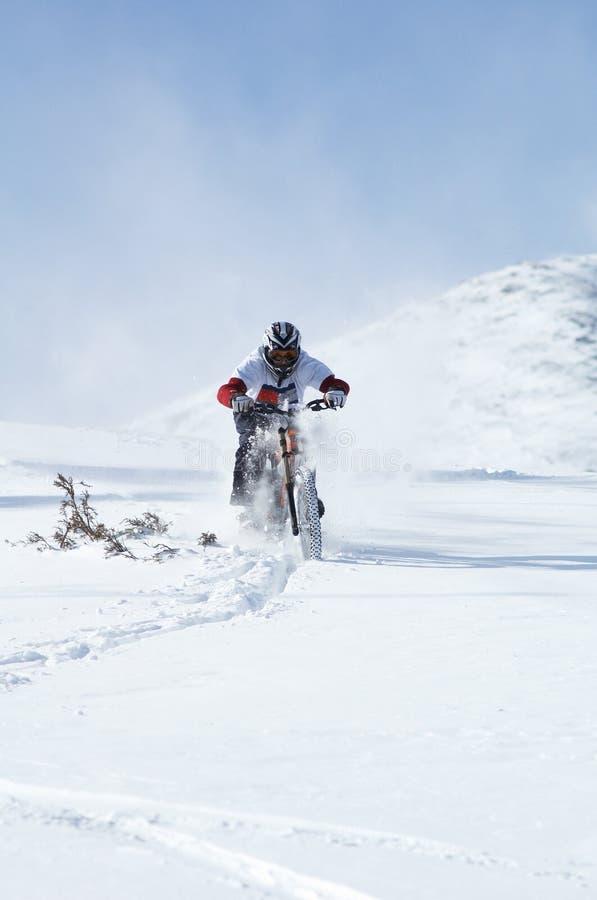 De fietser van de sneeuw bergaf stock fotografie