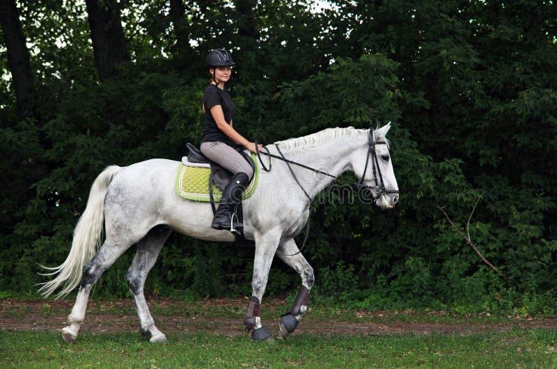 De fille randonnée à cheval équestre à cheval photo libre de droits