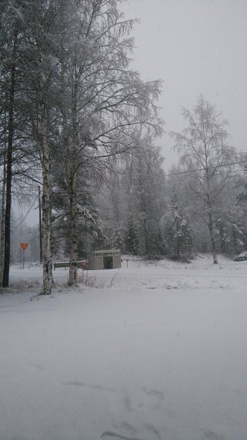 De finse winter royalty-vrije stock afbeelding