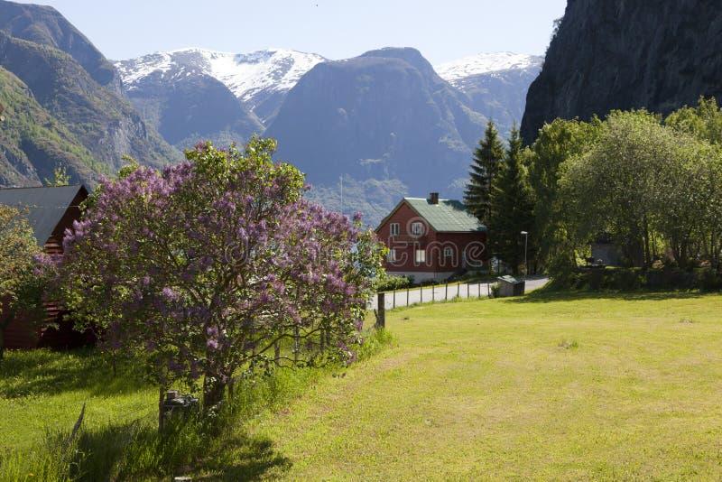 De fjord van Undredal royalty-vrije stock foto's