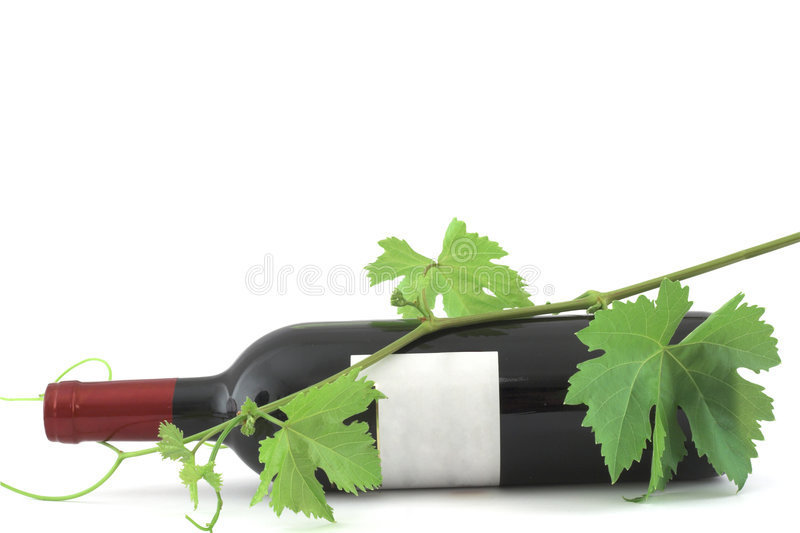 De fles en de wijnstokbladeren van de wijn stock foto's