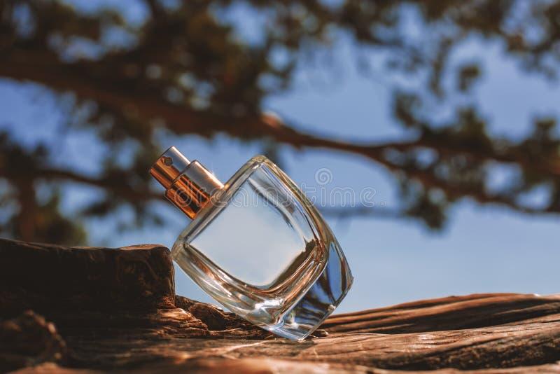De fles van het parfum royalty-vrije stock foto's