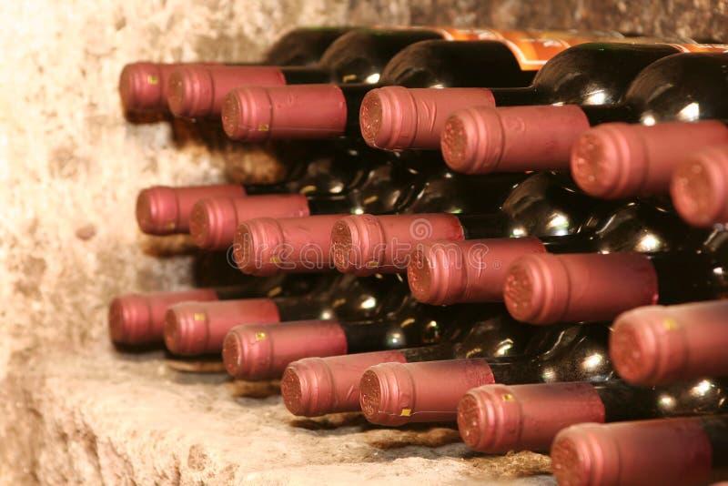 De flessen van de wijn in kelder stock foto