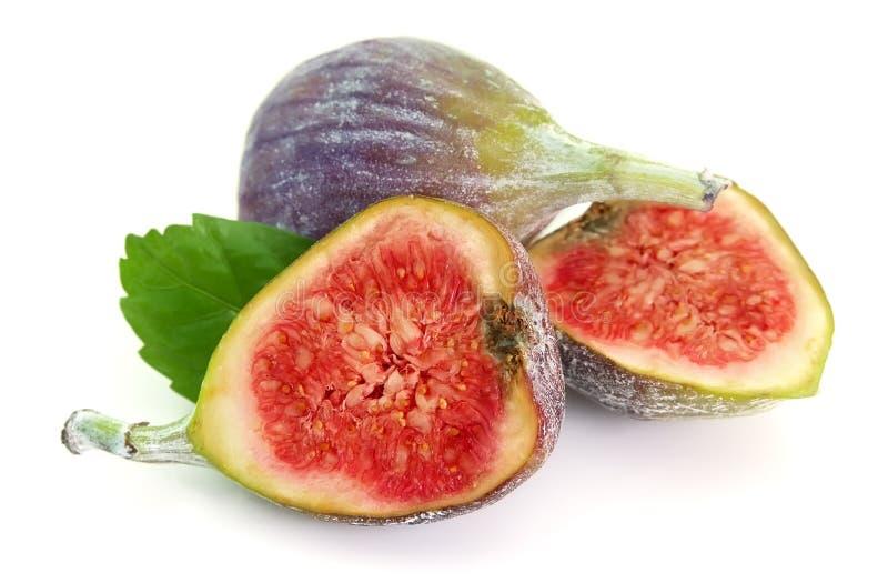 De foetussen van fig. royalty-vrije stock foto