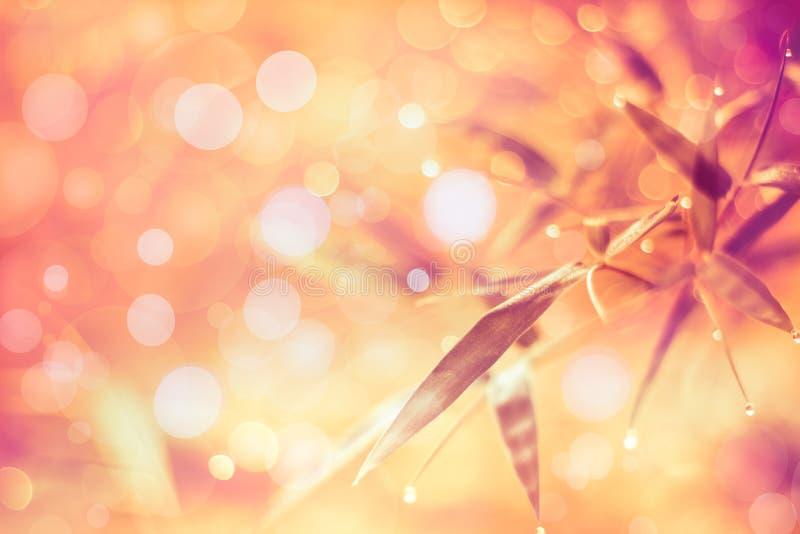 De fonkelende vage bokeh achtergrond van de lichten levendige kleur samenvatting royalty-vrije stock afbeelding