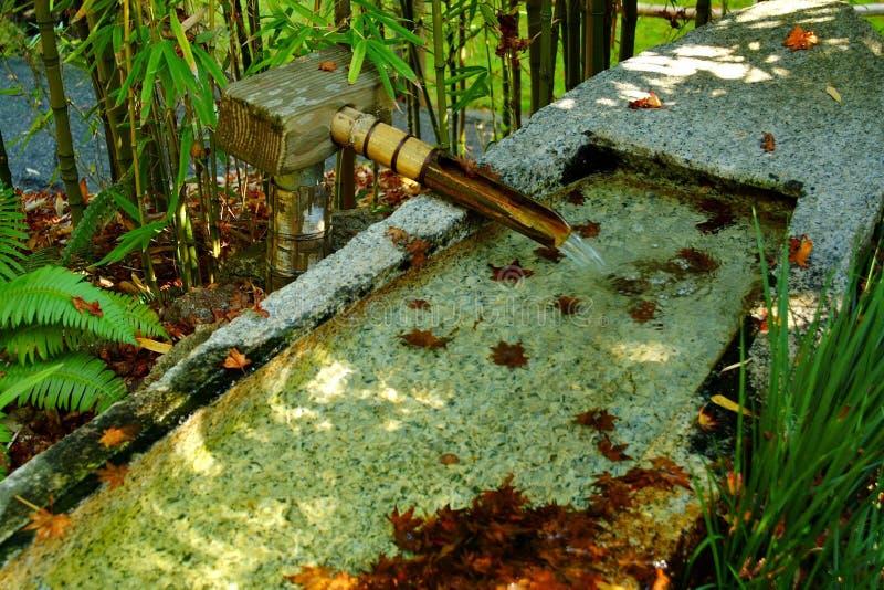 De fontein van het bamboe in tuin Zen stock fotografie