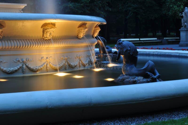 De fontein van het de stadscentrum van Warshau royalty-vrije stock foto