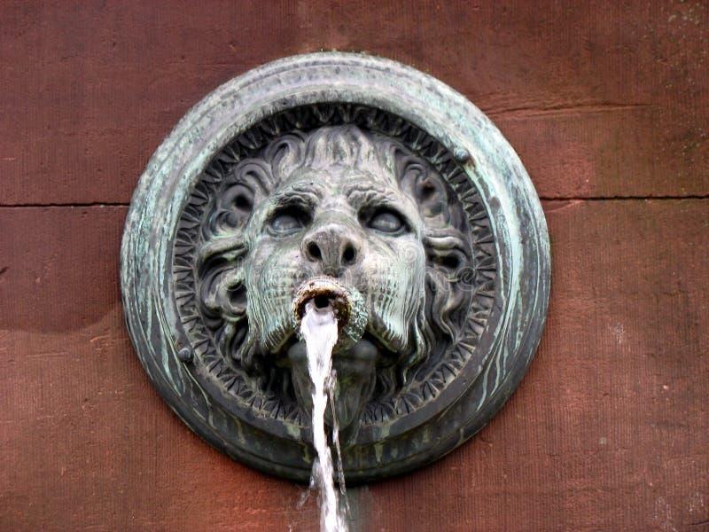 De fontein van Lionhead stock afbeeldingen