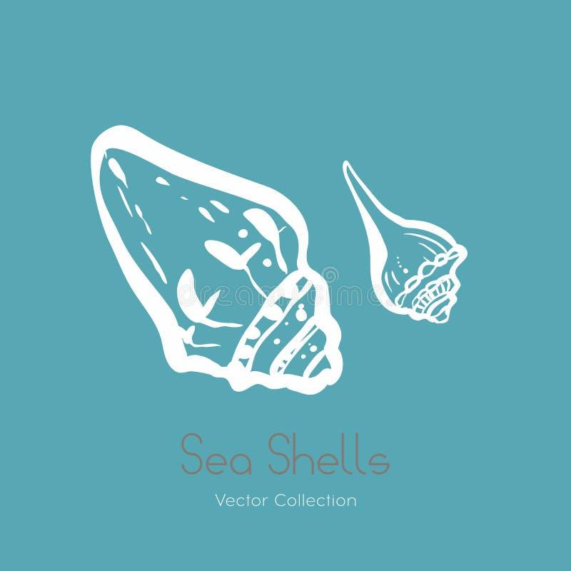 De fossiele reeks van het de zeeschelpembleem van ammonietnautilus Geïsoleerd van zeeschelpen, oud ammoniet fossiel embleem, kaar royalty-vrije illustratie