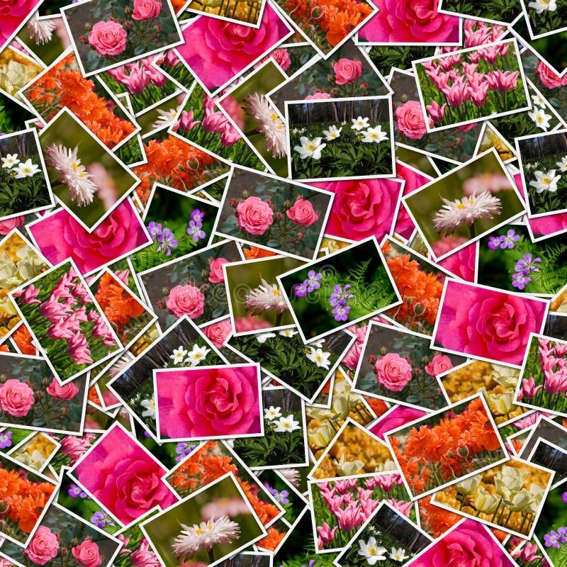 De foto'sachtergrond van bloemen royalty-vrije stock afbeelding