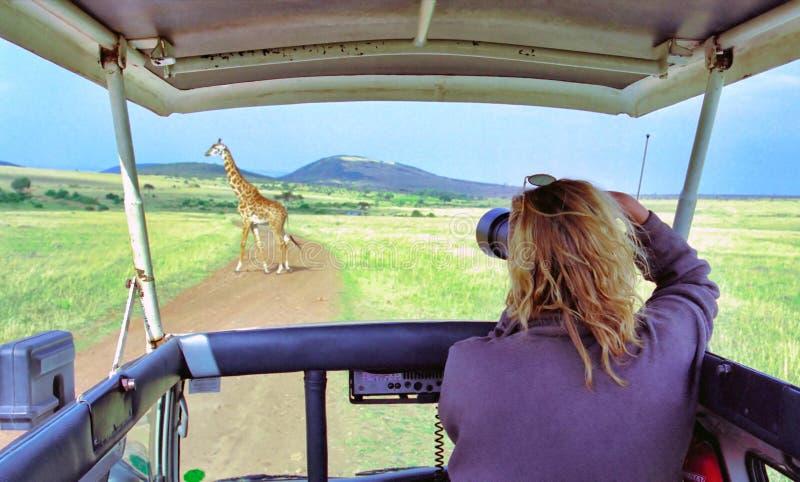 De fotograaf van het wild royalty-vrije stock afbeeldingen