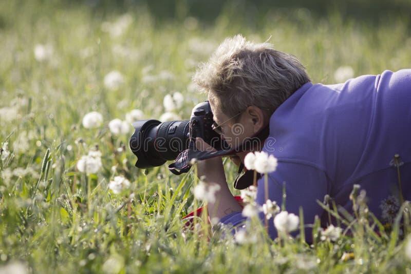 De fotograafvrouw neemt een foto van bloemen op een gebied stock afbeeldingen