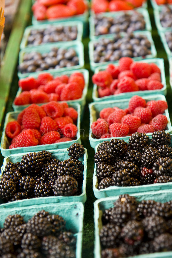 De Frambozen en de Bosbessen van Bllackberries royalty-vrije stock foto's