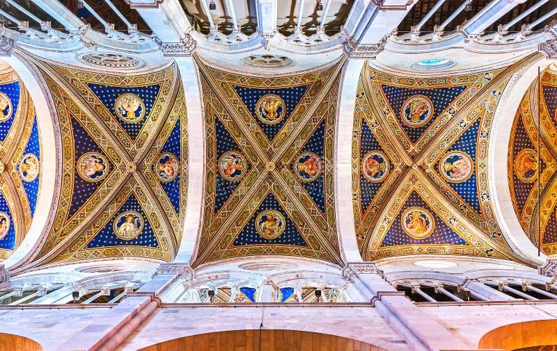 De fresko's op de kluis van San Martin Cathedral in Luca, Ital royalty-vrije stock foto