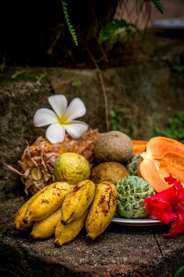 De frutas todavía de la variedad vida exótica foto de archivo libre de regalías