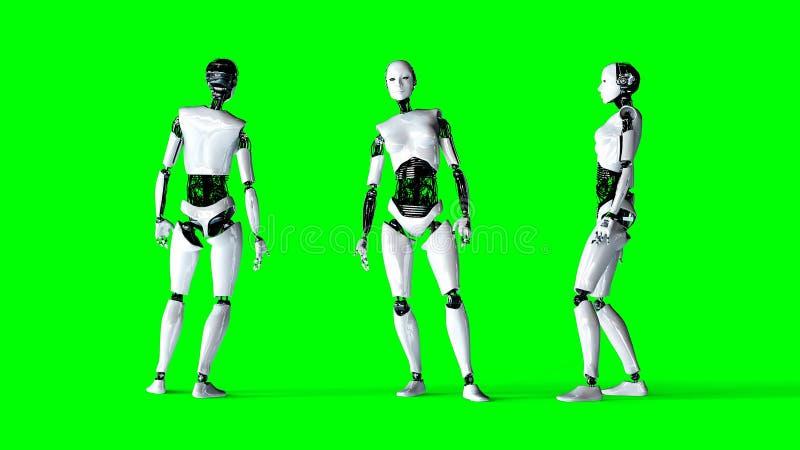 De futuristische humanoid vrouwelijke robot isoleert op het groene scherm Het realistische 3d teruggeven vector illustratie