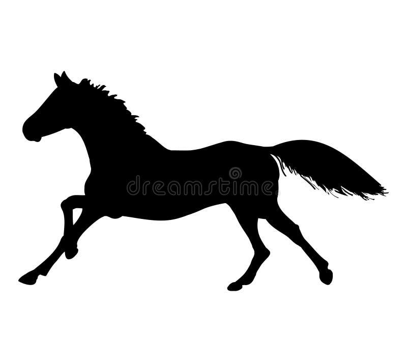 De galop van het paard (silhouet) stock illustratie
