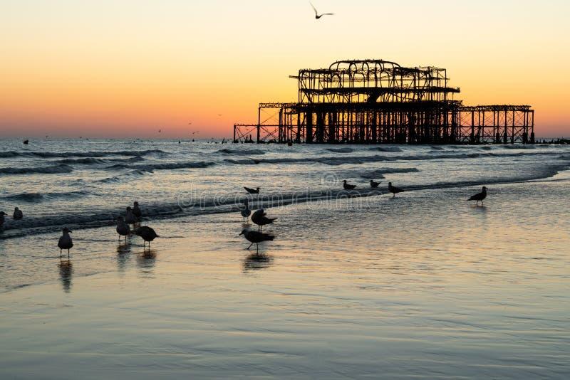 De gamla restna av Brighton Pier lämnade att stå i havet med härliga vågor och seagulls på stranden royaltyfri fotografi