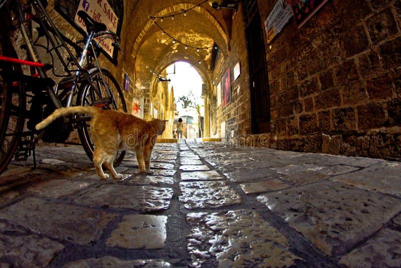 De gamla smala gatorna av Jaffa arkivbild