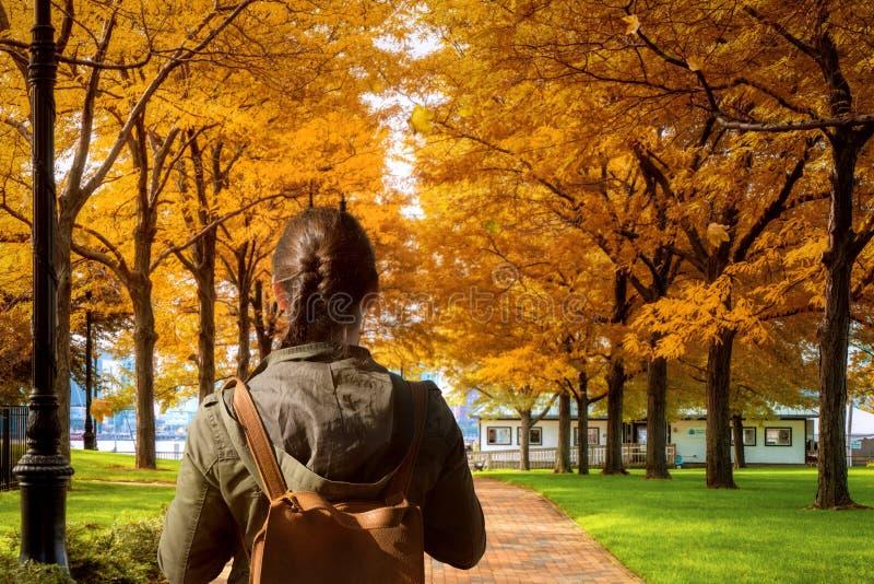 De gang van de damereiziger in de Herfstpark in Boston royalty-vrije stock foto's