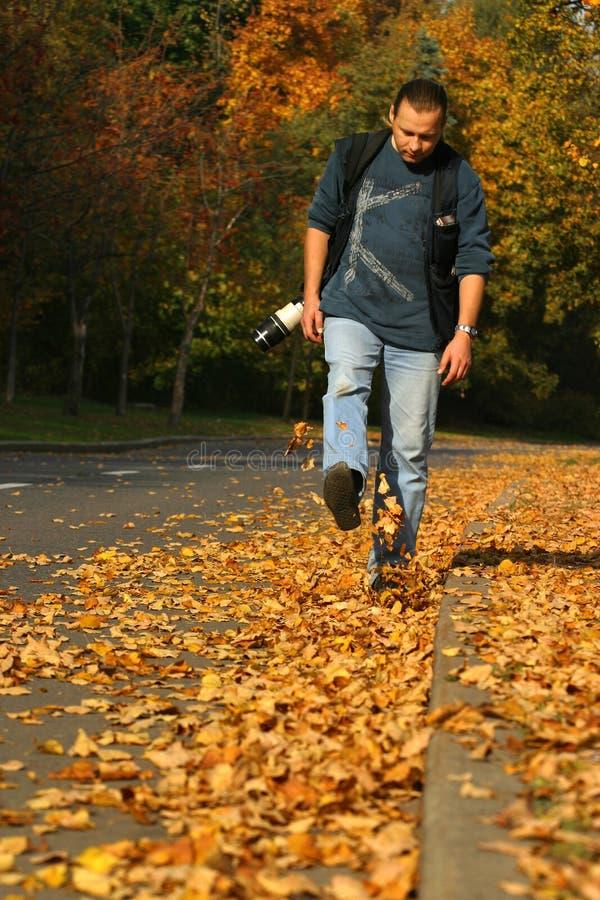 De gang van de herfst stock afbeeldingen