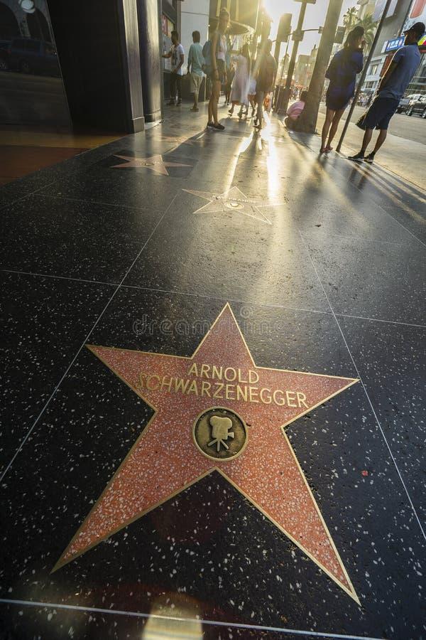 De Gang van Los Angeles Hollywood van Bekendheid stock foto's