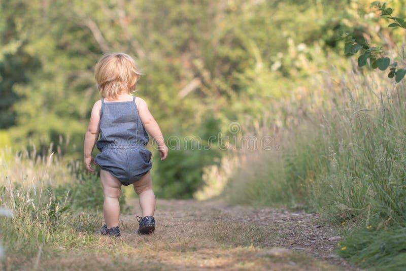 De gangen van het babymeisje weg op groene bosweg stock foto