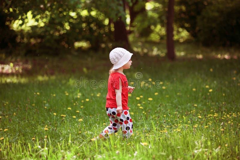 De gangen van het meisje in het bos royalty-vrije stock fotografie