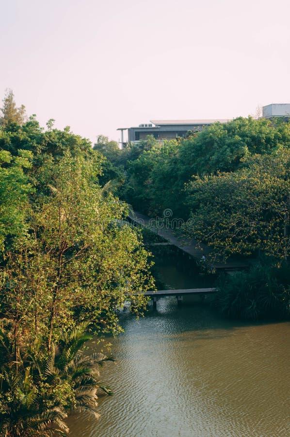 De gangweg maakte van hout om de rivier in de avond te kruisen, Thailand royalty-vrije stock fotografie