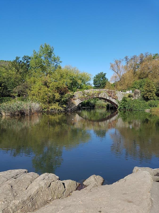 De Gapstow-Brug, Central Park, NYC stock foto