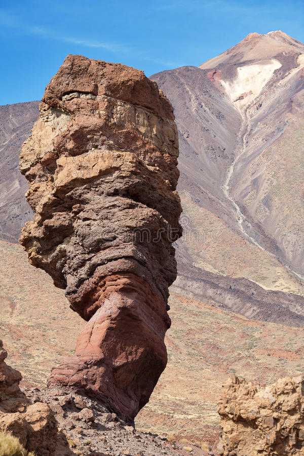 de garcia roques spain tenerife arkivbild