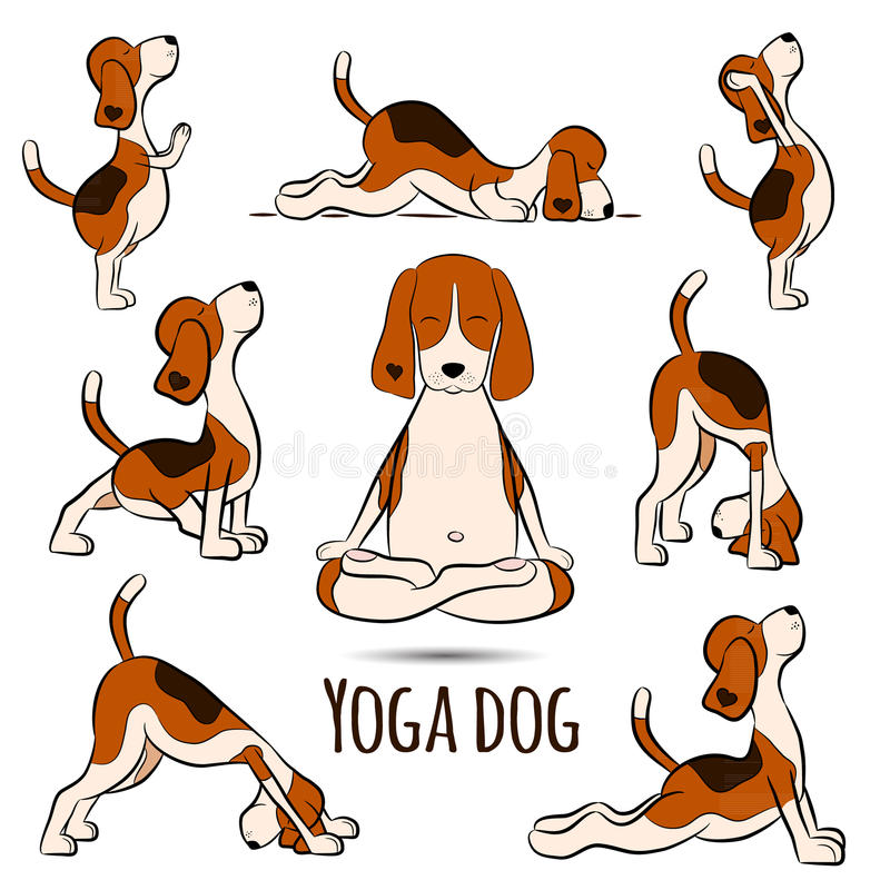 De geïsoleerde brak die van de beeldverhaal grappige hond yogapositie doen stock illustratie