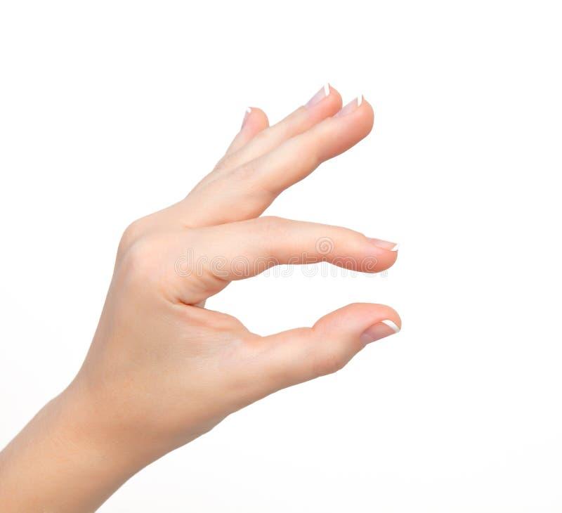 De geïsoleerde vrouwenhand toont snuifje om te zoemen of holdingsvoorwerp royalty-vrije stock foto's