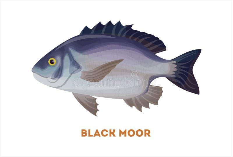 De geïsoleerde zwarte legt vissen vast vector illustratie