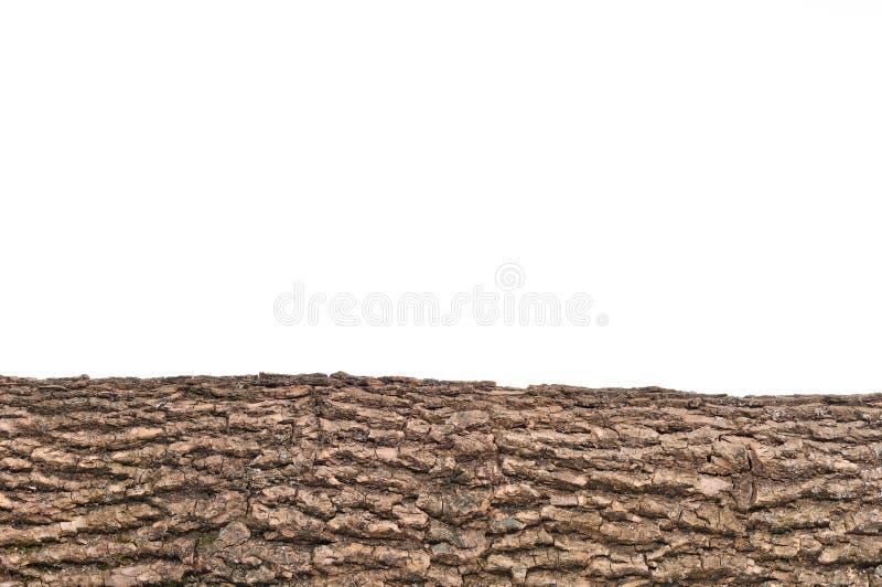 De geïsoleerder schors van de stompstomp met houten textuur stock foto's