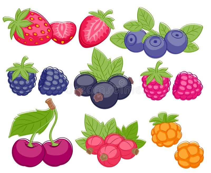 De geassorteerde vectorillustratie van de bessenreeks stock illustratie