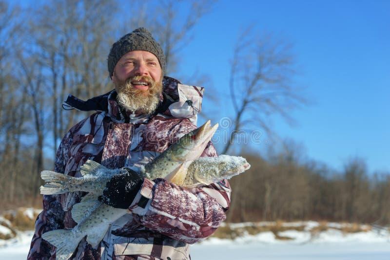 De gebaarde mens houdt bevroren vissen na de succesvolle winter vissend bij koude zonnige dag stock foto's