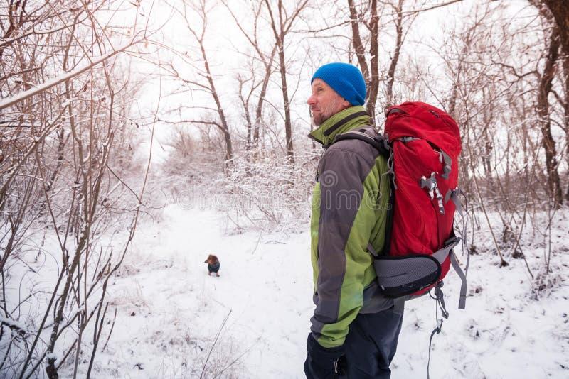 De gebaarde mens met kleine hond loopt in het de winterbos royalty-vrije stock foto's