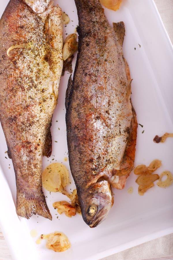 De gebakken Vissen van de Regenboogforel royalty-vrije stock afbeelding