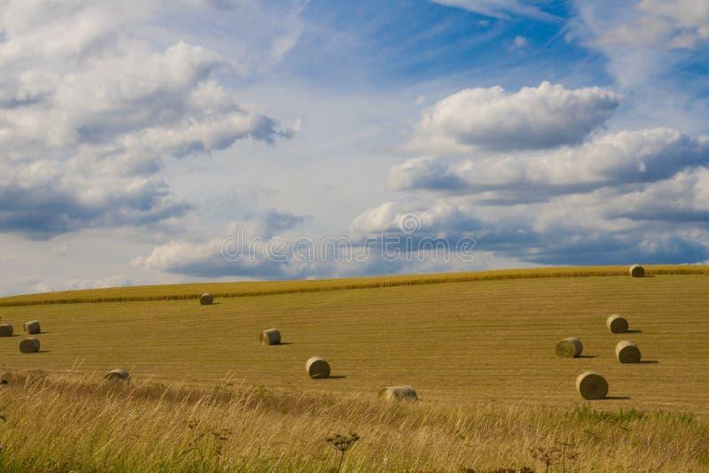 De gebieden van de zomer, Cambridgeshire royalty-vrije stock afbeeldingen
