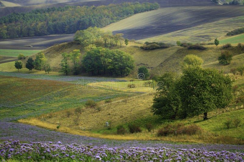 De gebieden van Moravian royalty-vrije stock afbeelding