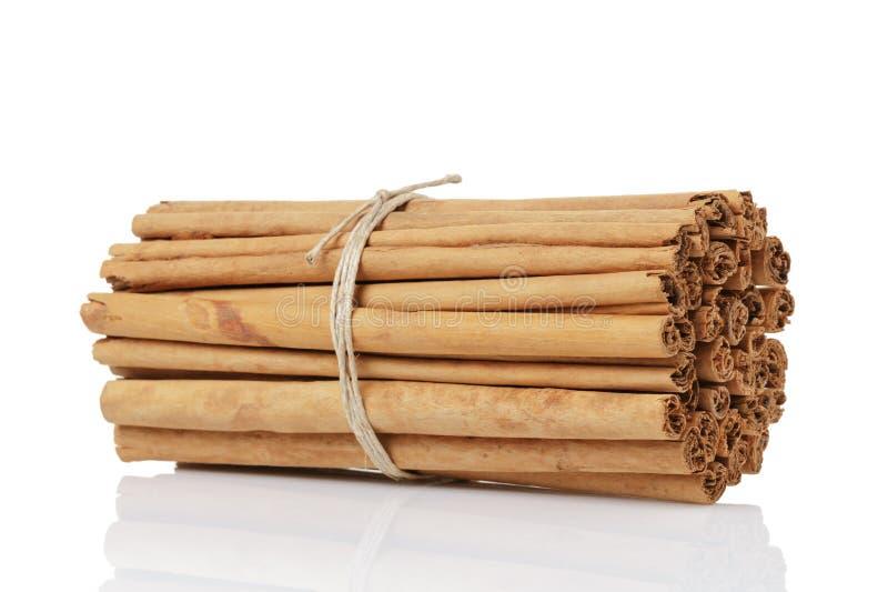 De gebonden ware geïsoleerde pijpjes kaneel van Ceylon, royalty-vrije stock fotografie