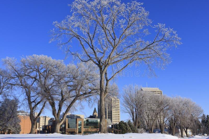 De gebouwen van de stad in de Winter royalty-vrije stock afbeeldingen